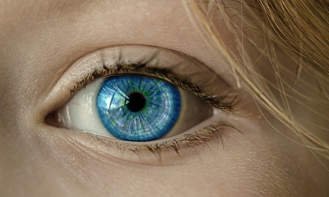 Display ads trick: eyes GUIDE attention